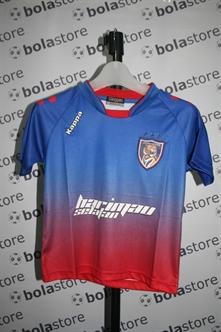 Picture of Johor Junior Jersey 2013 Home Original